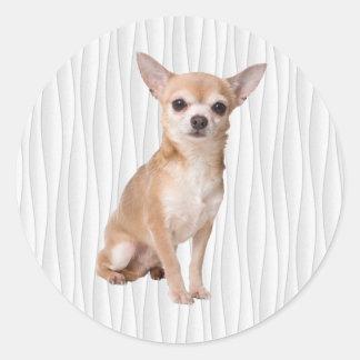 Chihuahua Runt Klistermärke