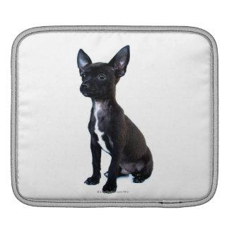 Chihuahua Sleeve För iPads