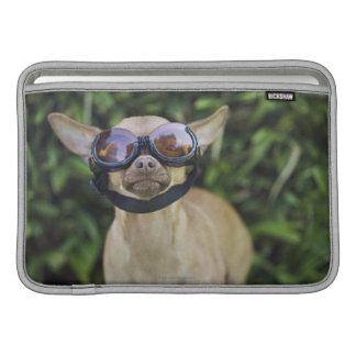 Chihuahua som ha på sig goggles MacBook sleeve