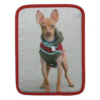 Chihuahuahund iPad Sleeve