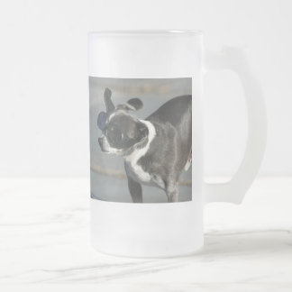 Chihuahuamugg Frostat Ölglas