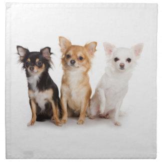Chihuahuaservetter Tygservett