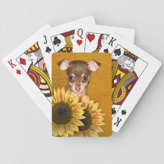 Chihuahuavalp och solrosor spelkort