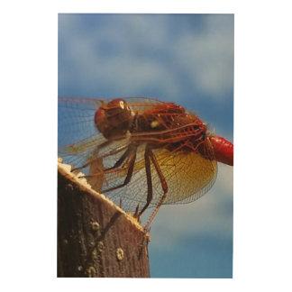 Chili Dragonflien Trätavla