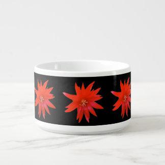 Chili Bowl - Easter Cactus
