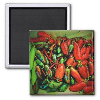 Chilien pepprar magneten magnet