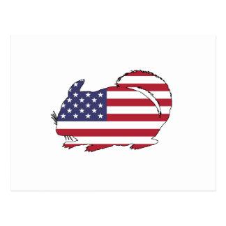 """Chinchilla """"amerikanska flaggan """", vykort"""