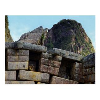 Chinchilla på Machu Picchu, Peru Vykort