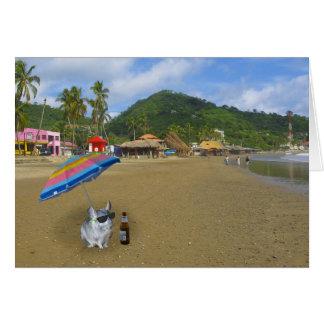 Chinchilla på stranden hälsningskort