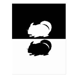 chinchilla vykort