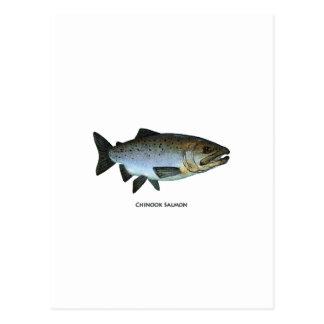 Chinook - kunglax vykort