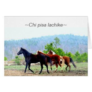 Choctawhälsningkort (Chipisa lachike) Hälsningskort