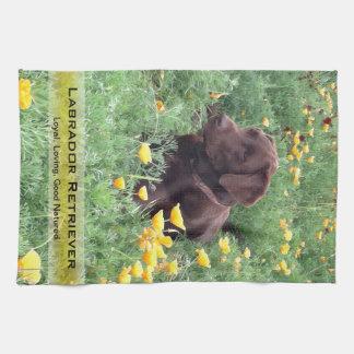 Chokladlabbet i den Kalifornien vallmon lappar Kökshandduk