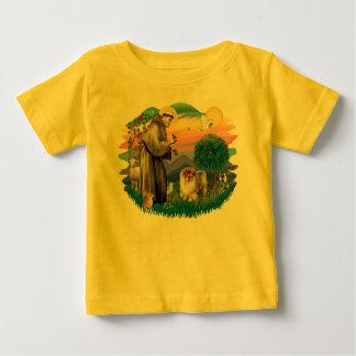 ChowChow (B) Tshirts