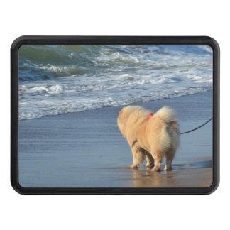chowchow på strand dragkroksskydd