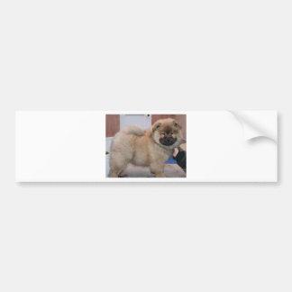 chowchow pup.png bildekal