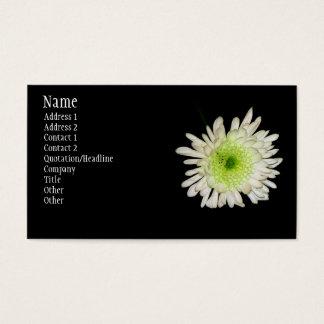 Chrysanthemum Visitkort