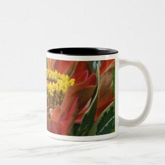 Chrysanthemumblomma Två-Tonad Mugg