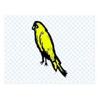 Churla kanariefågel vykort