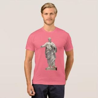 Cicero staty tshirts
