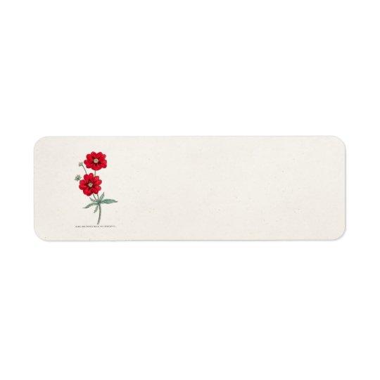 Cinquefoil för Potentilla för blomma för Returadress Etikett