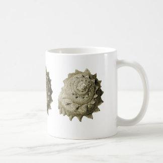 Cirkelsågsnäcka Kaffemugg