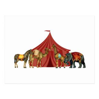 Cirkusdjur och tält vykort