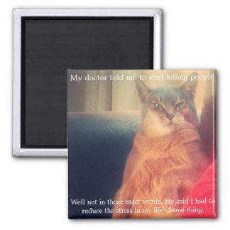 Citationstecken och kattmagnet