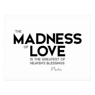 CITATIONSTECKEN: Plato: Noja av kärlek Vykort
