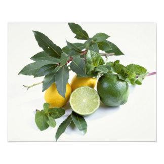 Citroner för använda i USA endast.) Fotografi