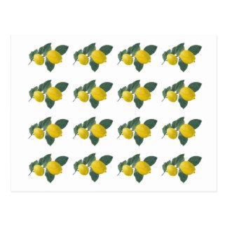 Citroner på en gren vykort