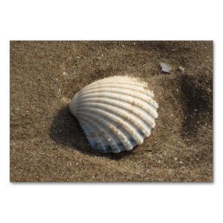 Clamshell i sanden bordsnummer