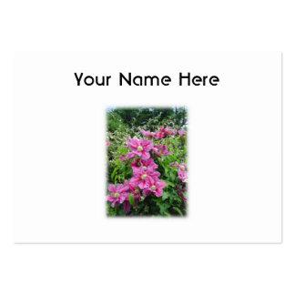 Clematis. Nätt rosor - purpurfärgade Flowers. Visit Kort