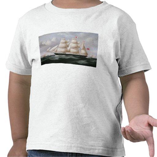 """ClipperBarque """"Procymatia"""" av Dover (olja på canv T-shirt"""