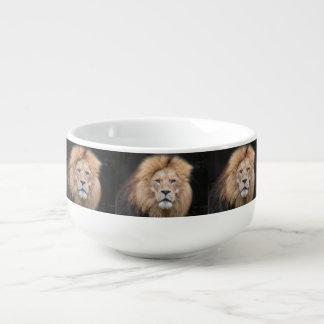 Closeupporträtt av en lejon manlig soppmugg