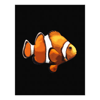 Clownfisk Brevhuvud