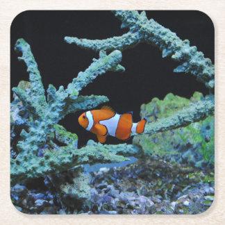 Clownfisk i korall underlägg papper kvadrat