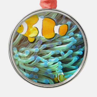 Clownfisk Rund Silverfärgad Julgransprydnad