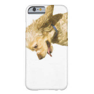 CockerspanielSpaniel Barely There iPhone 6 Fodral