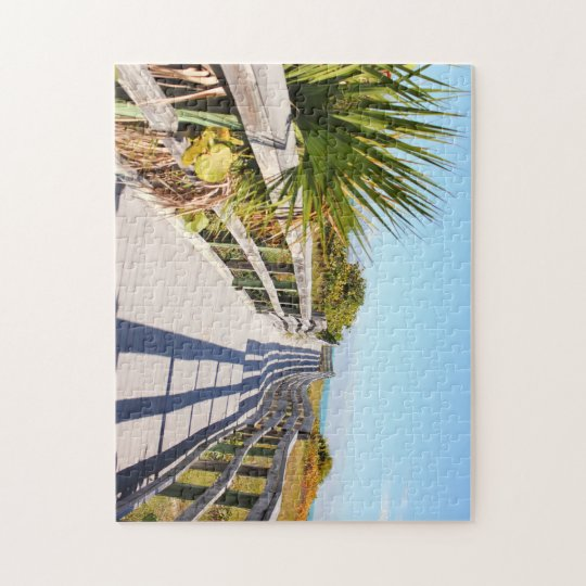 CoconutGrove Florida Pussel