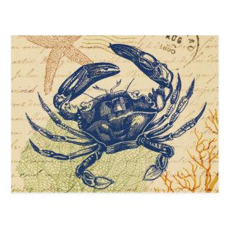 Collage för sjösidablåttkrabba vykort