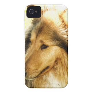 Collie iPhone 4 Case-Mate Cases