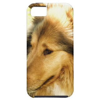 Collie iPhone 5 Fodraler