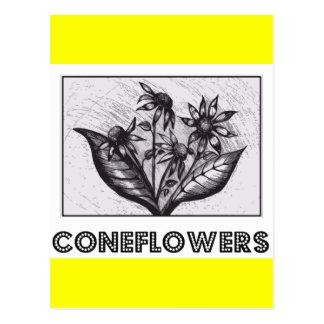Coneflowers Vykort