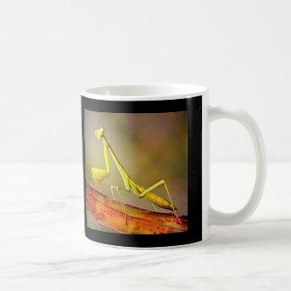 Connecticut bönsyrsa kaffemugg