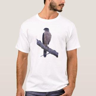 Coopers hök tee shirt