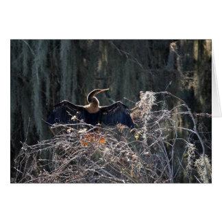 Cormorant Hälsningskort