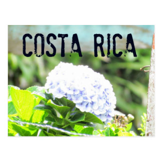Costa Rica blommavykort Vykort
