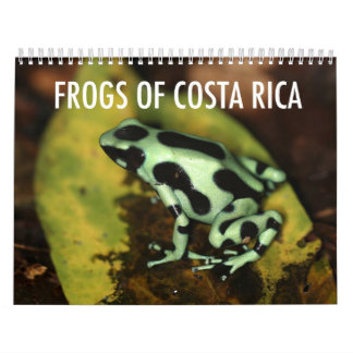 Costa Rica grodakalender Kalender