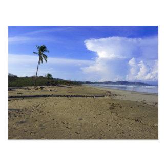 Costa Rica strand och palmträdfotovykort Vykort